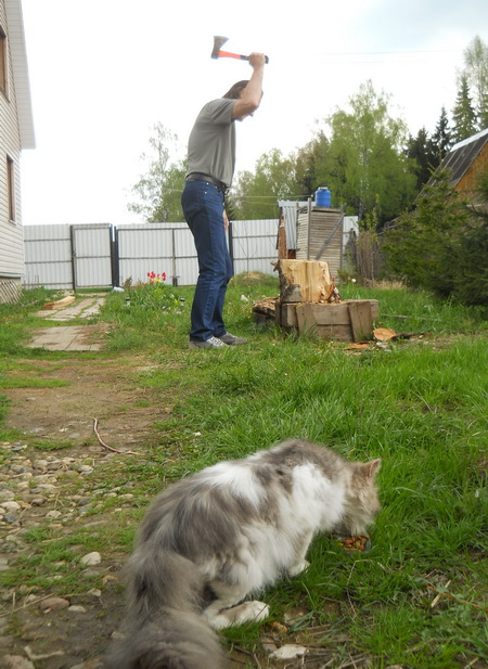 Бразервиль-пати 5: Хаммер и Бугимент